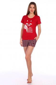Костюм женский, модель 146, трикотаж (Red Fox)